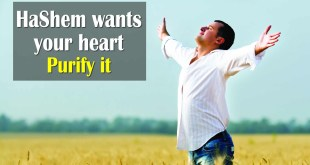 Hashem wants your Heart | Purify it