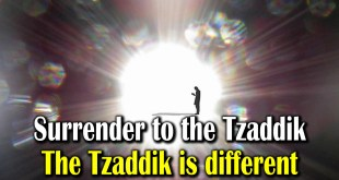 Surrender to the Tzaddik | The Tzaddik is different