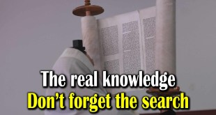The real knowledge | Don't forget the search