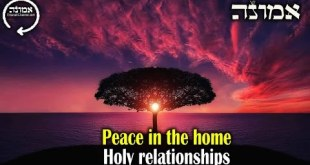 Peace in the Home | Holy Relationships