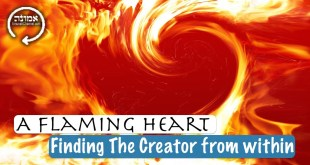A flaming heart | Finding The Creator from within