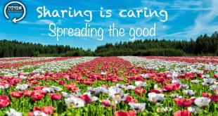 Sharing is caring | Spreading the good