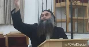 גיא גרידיש 2