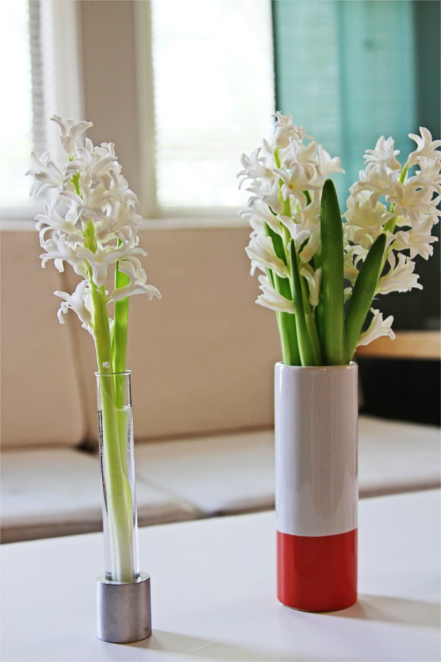 Brewed-Together-Hyacinth-Tube-Bouquet-17