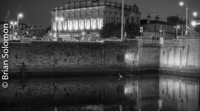 Heuston Station and a Heron—September 2016.