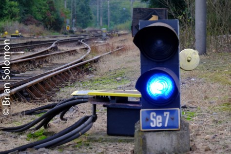 Czech Railways use a blue light for 'stop' on their shunting signals.