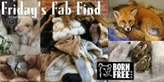 fur donation