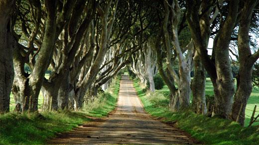 kings-road-filming-location
