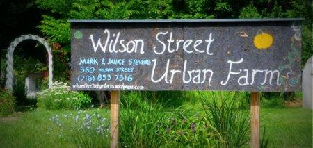 Wilson Street Urban Farm