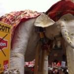 elephant-usine-reprise-par-ses-ouvrier