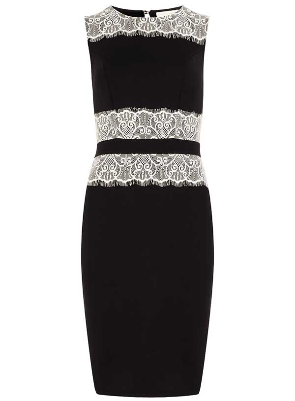Ink Lace Pencil Dress