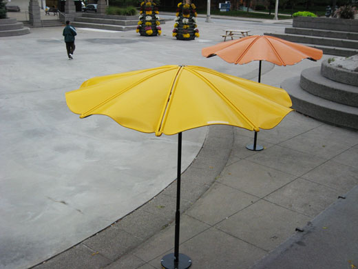 Tops of the Umbrellas at Charles Clark Square