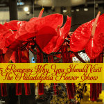 5 Reasons Why You Should Visit The Philadelphia Flower Show