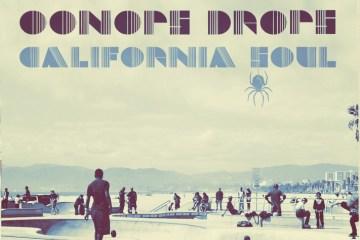 oonops-california-bkr