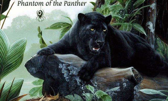 oonops-drops-phantomofthepanther