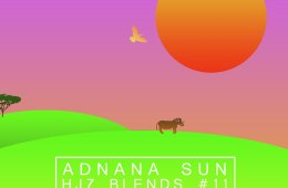 hj7-blends-11-adnana-sun