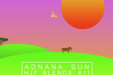hj7-blends-11-adnana-sun