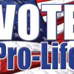rp_vote-pro-life-flag-2-300x225.png