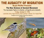 Audacity-of-Migration-Bryan-Pfeiffer