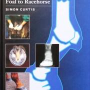 FromFoalToRacehorse