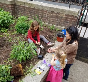 Garden Project and Gardening Gatherings @ Brooklyn Society for Ethical Culture | New York | United States