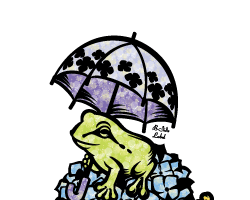 M3931ナツミ雨の日カエル