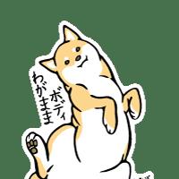 M3797わがままボディ柴犬
