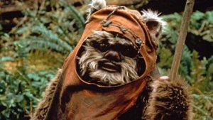 2289647-ewok_49229_screen