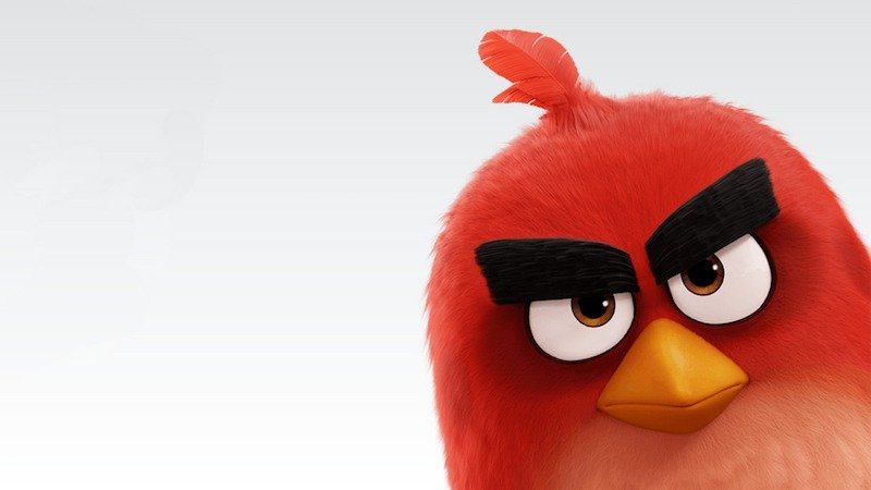 the-angry-birds-movie-2016-1