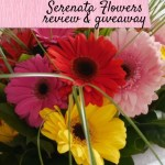 Blooming lovely from Serenata Flowers – giveaway