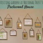 Enjoying the gardens at National Trust's Packwood House