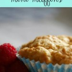 Easy peasy 3 ingredient mini muffins