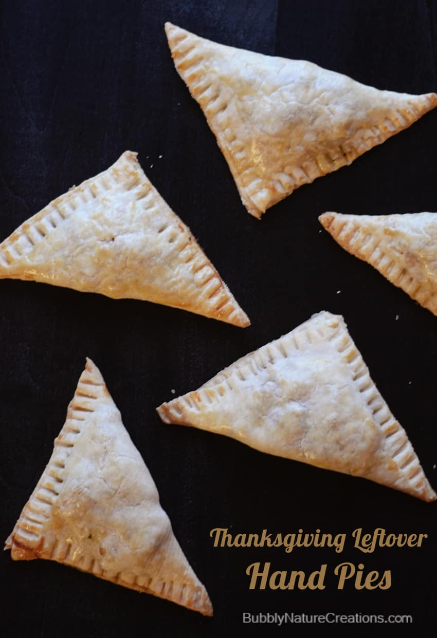 Thanksgiving Leftover Handpies 3