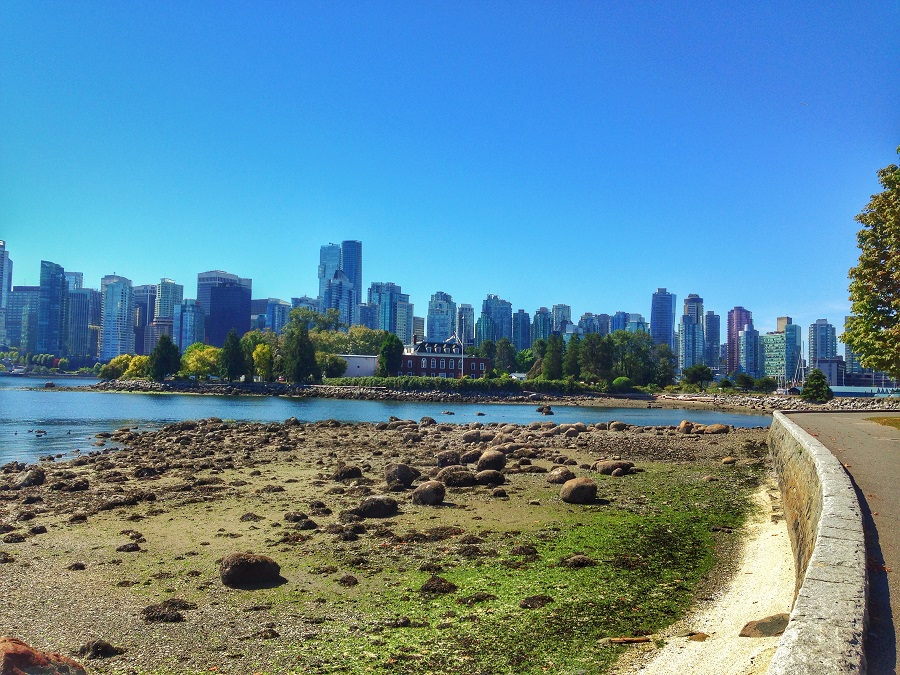 Learning Through Clients and Vancouver Recap Part 3