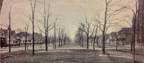 Humboldt Parkway looking north from East Utica, long before being destroyed by the Kensington Expressway