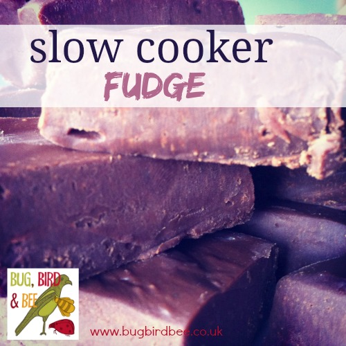 Slow Cooker Vegan Coconut And Rum Fudge