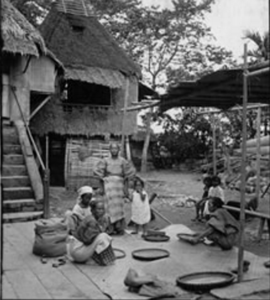 Early Filipino women hand-winnowing rice at the backyard of a traditional house.