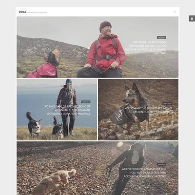 Dogs Joomla Template (Joomla template for websites about pets and animals) Item Picture