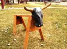 Learn to Rope with a Steer Sawhorse