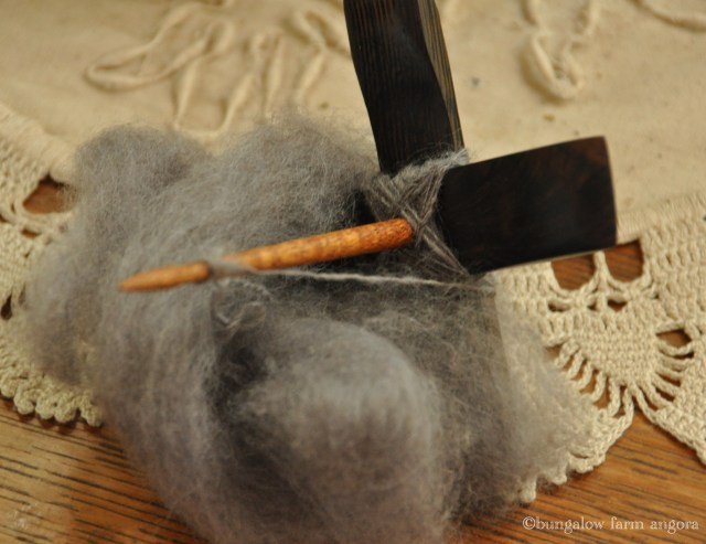 Gray corrie turk (copy)