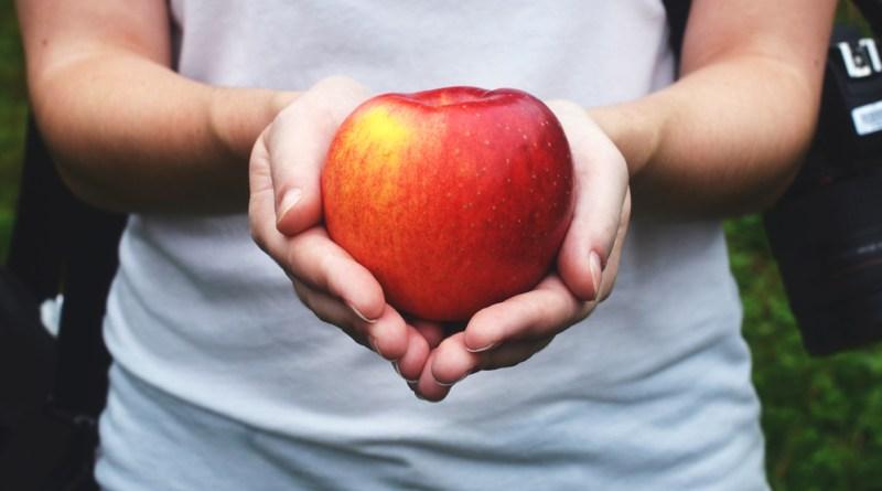 Korab_Apple_Picking