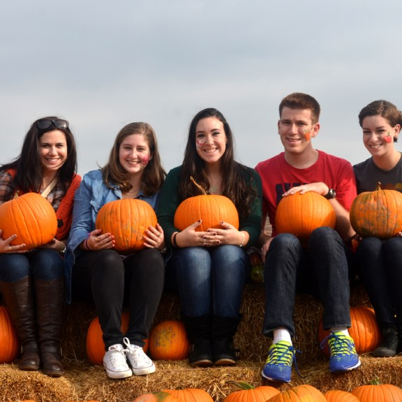 Seniors Stephanie Hardy (CAS), Jeremy Lowe (SMG), Nikki Jenner (SHA), Hannah Weintraub (COM), and Alyssa Langer (COM/SAR) pose in the pumpkin patch with pumpkins grown right on the farm!
