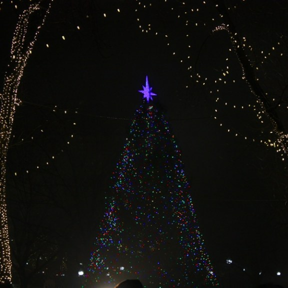 The Boston Common Christmas Tree will stay lit for a few weeks until Christmas