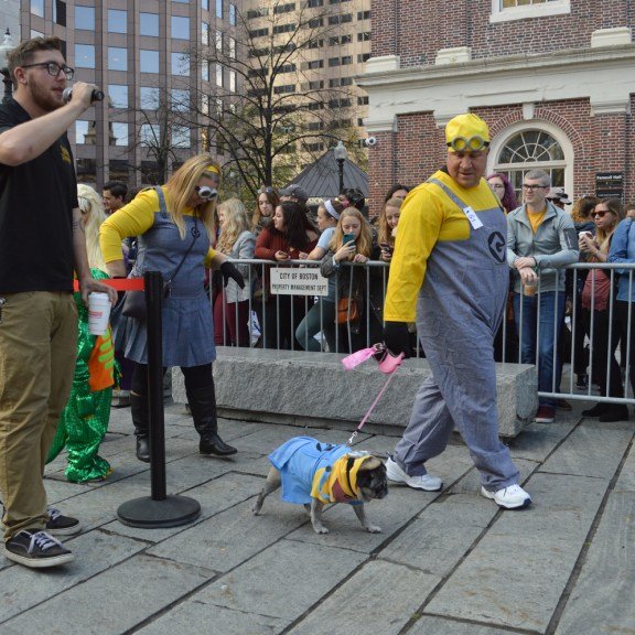 These were not the only minions at the parade.