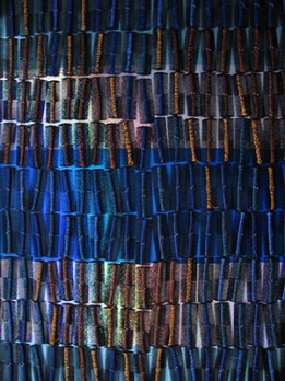 Sonya Clark,Aqua Allure (detail), 2005; comb, thread, and foil, 8 feet X 4 feet X 1 inch.