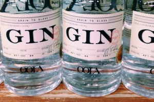 oola-gin-review