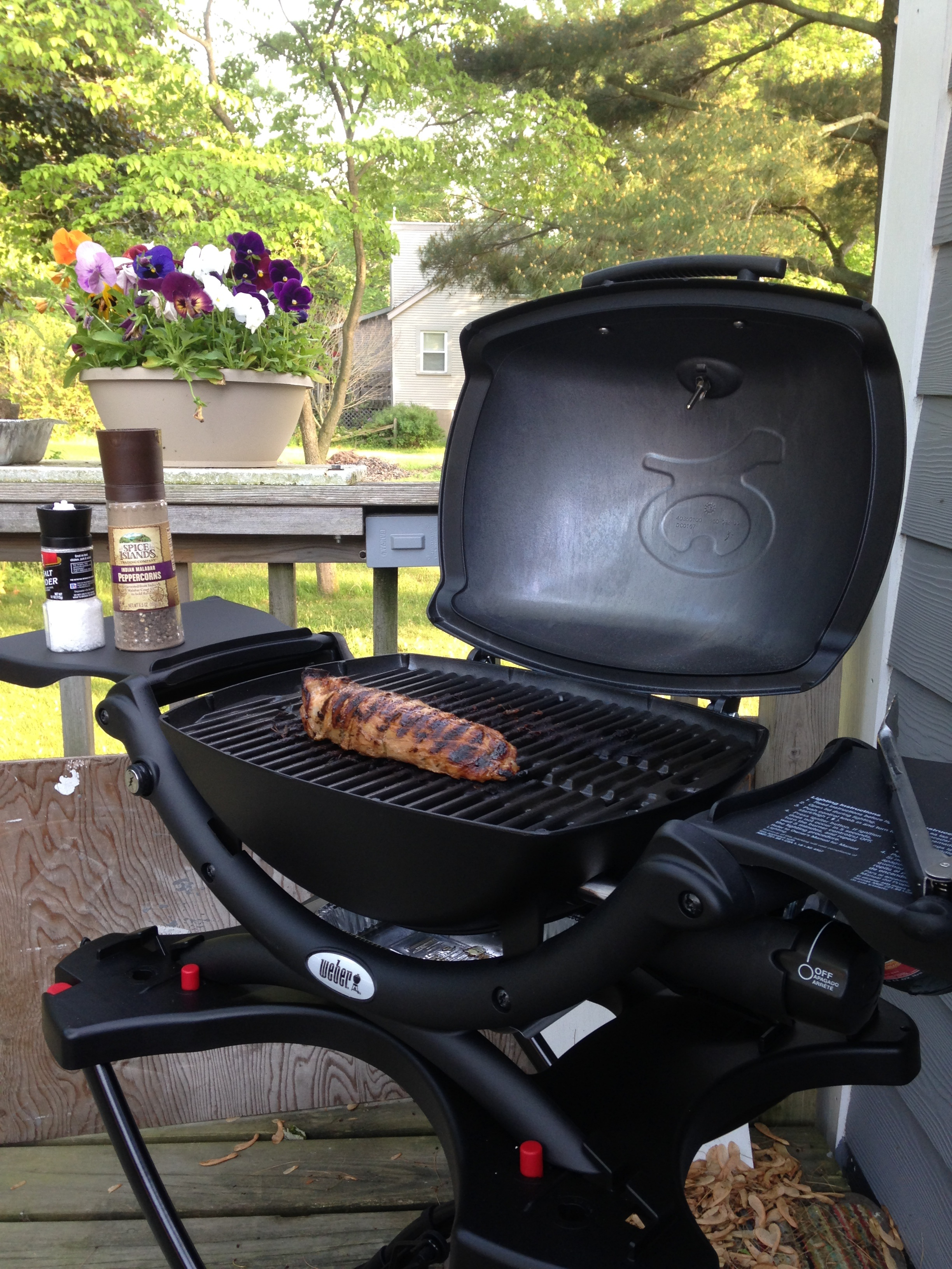 weber q1200 grill review busted wallet. Black Bedroom Furniture Sets. Home Design Ideas