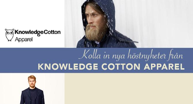 knowledge cotton banner