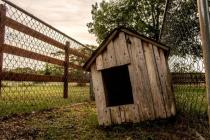 Get Out Of The Doghouse