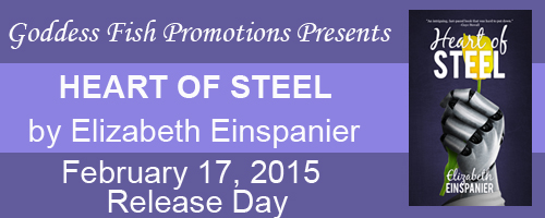 Release Day Heart of Steel Tour Banner copy
